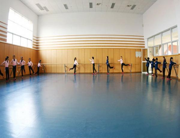 重庆学校舞蹈室PVC地