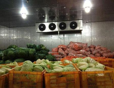 石家庄蔬菜冷库