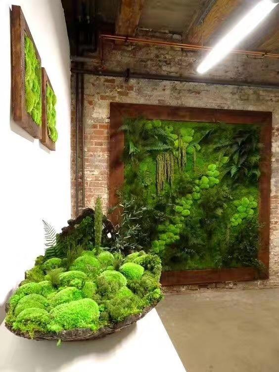 重庆植物墙