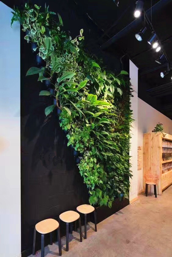 重庆仿真植物墙价格