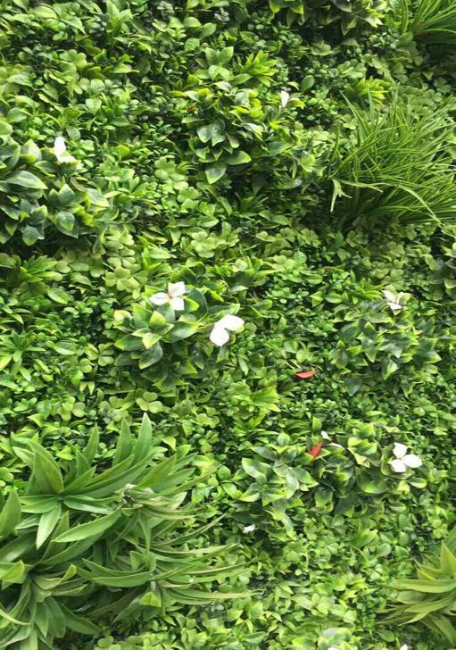 重庆私家花园