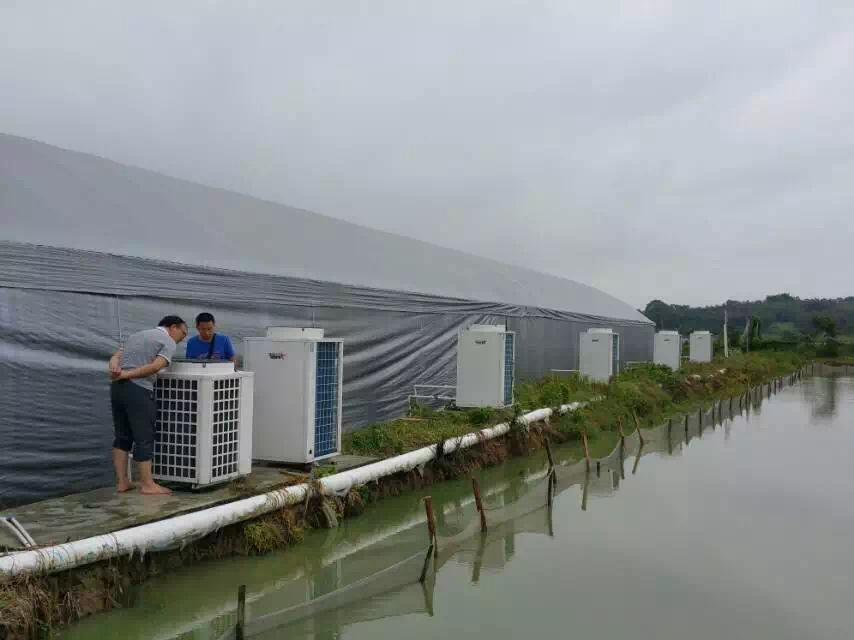 养殖场恒温工程案例