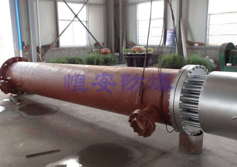 二甲醚系统防爆电加热器