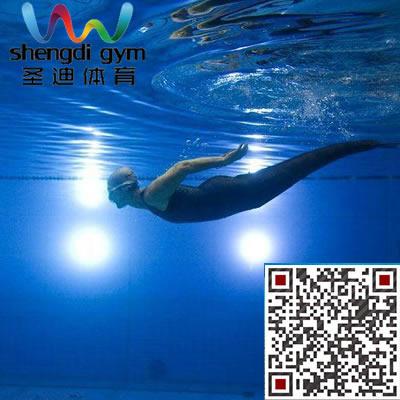 河北成人游泳培训