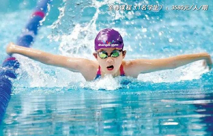至尊游泳课程