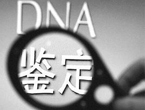DNA亲子鉴定