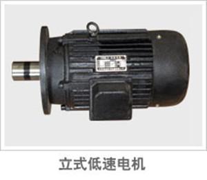 立式低速电机