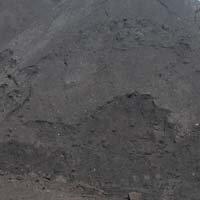 求购钢厂用烧结煤