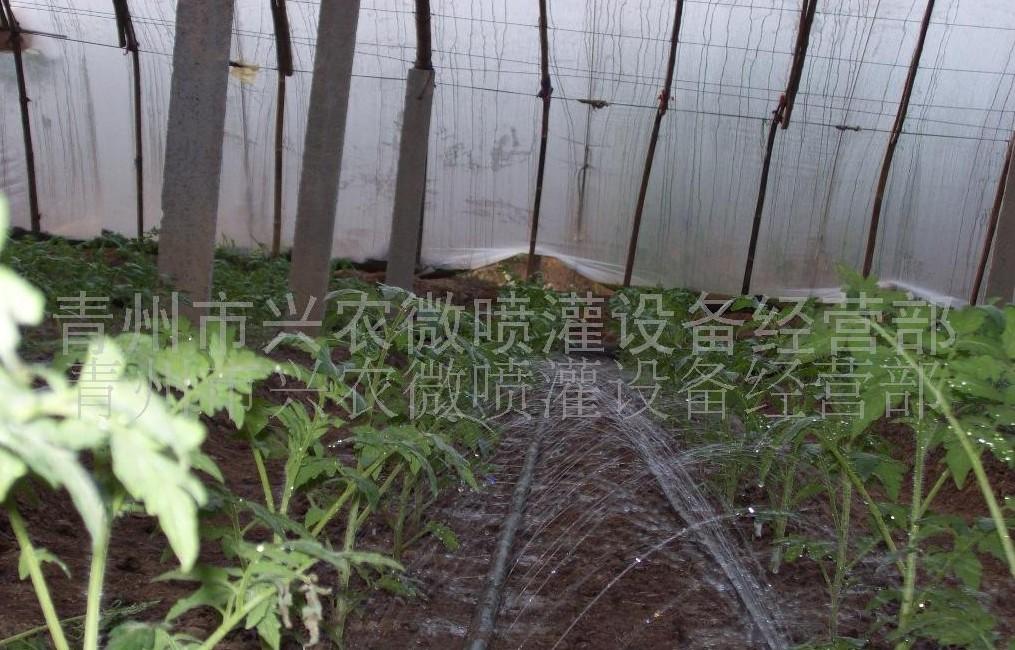 葡萄专用微灌设备