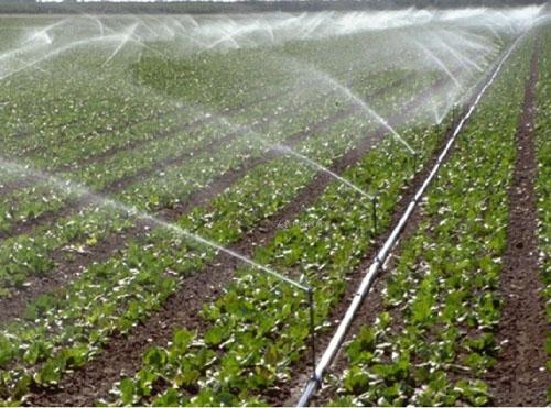 微灌设备供应商