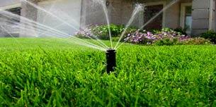 山东节水灌溉