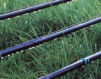 【资讯】滴灌带的高效使用技术分享 如何更好的安装滴灌带滴灌系统