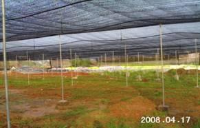 昆明温室大棚