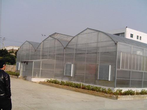 温室钢架大棚