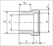 锻钢变径承插焊接头