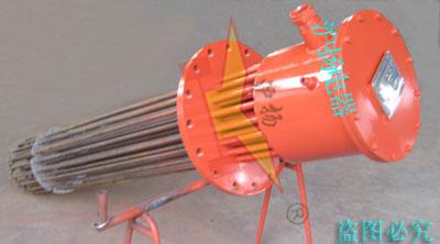 插入型电加热器