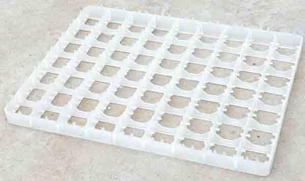 63枚鸭蛋蛋托