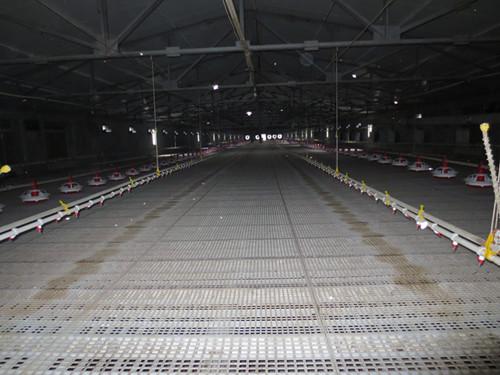 【知识】在猪场中需要塑料漏粪地板解决潮湿 <a href='/' target='_blank'>塑料漏粪板</a>的制作步骤