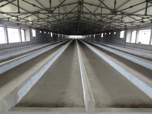 【图解】塑料漏粪地板可使猪场避免潮湿 塑料漏粪板的清洗进程