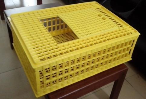 塑料成鸡笼
