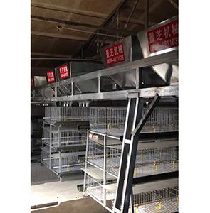 养鸡机械价格