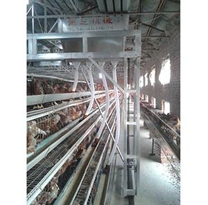 【推荐】养鸡设备自动化实现窍门 养鸡设备清粪机加工流程分析
