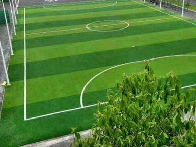 人造草坪哪家好