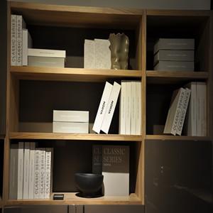 常州挪亚家书柜