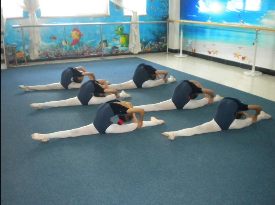 秦皇岛少儿中国舞及芭蕾形体班