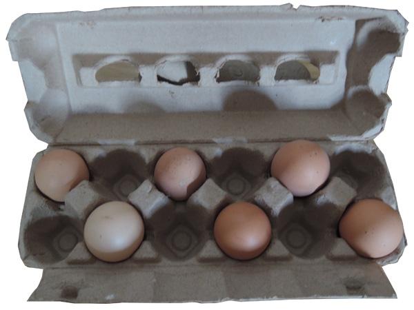 12枚礼品盒蛋托