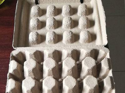 20枚鸭蛋盒